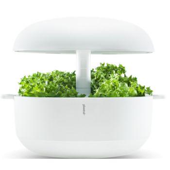 Plantui 6 Smart Garden Blanc