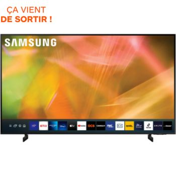 Samsung UE60AU8005 2021