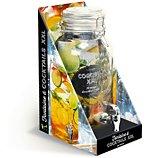 Coffret Larousse Fontaine à cocktails XXL 4.5L